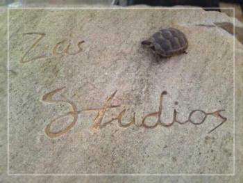 Zas Studios - Studio with Garden View