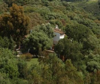 Las Limas - Apartment mit 2 Schlafzimmern und Poolblick