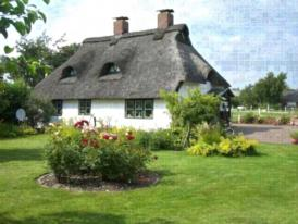 Kleines historisches  Reetdachhaus auf altem Deich