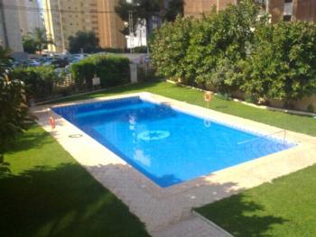 Apartment in Benidorm 101302