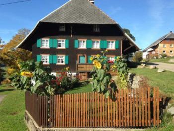 Beste Spielothek in Hinterdorf Menzenschwand finden