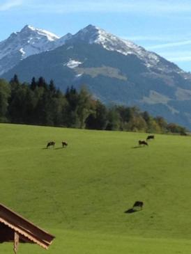 Traumhafte Ferienwohnung, 2 Balkone mit Bergblick, 10 Min nach Kitzbühel
