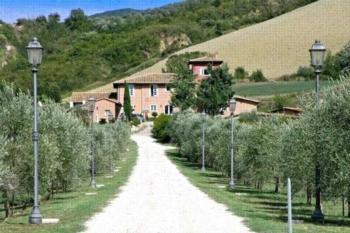 Alviano 49798-2