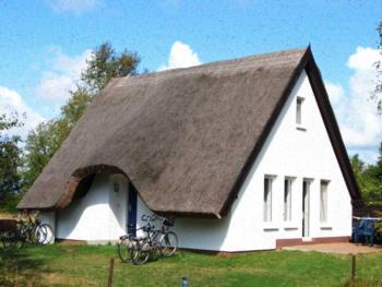 Ferienhaus Hiddensee bei Neuendorf - Ferienhaus (Terrasse)