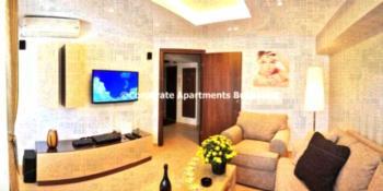 Corporate Apartments Bucharest - Deluxe Apartment mit 2 Schlafzimmern