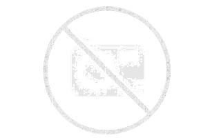 Resort Haamstede - 4-Pers.-Ferienhaus - Luxus