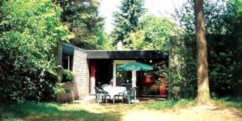 Het Vennenbos - 6-Pers.-Ferienhaus