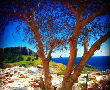 Little Lindos Sea View Studios - Studio mit Meerblick und Aussicht auf die Akropolis (2 Erwachsene)