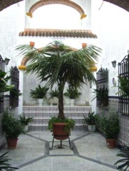 Apartamentos Los Arcos - Apartment mit 2 Schlafzimmern (4 Erwachsene)