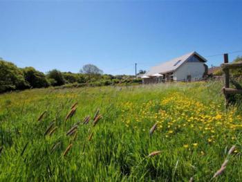 Ferienhaus Meadow View