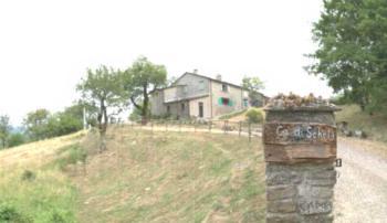 Ca' Scheta - Studio