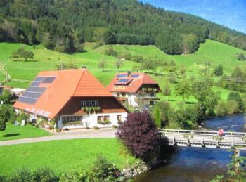 Jungbauernhof (Oberwolfach). Ferienwohnung Wiesenblick, 55 qm, 1 Schlafraum