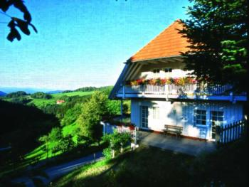 Schornhof (Oberwolfach). Ferienwohnung Schwimmbad, 60 qm, 2 Schlafräume