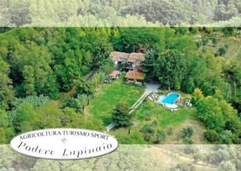 Casa Vacanza Podere Lupinaio - Apartment mit 2 Schlafzimmern und Panoramablick