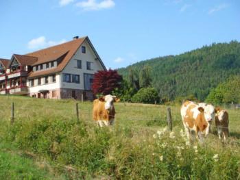 Ferienwohnung Freyenhöfe