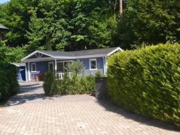 Dom wakacyjny Allurepark de Thijmse Berg
