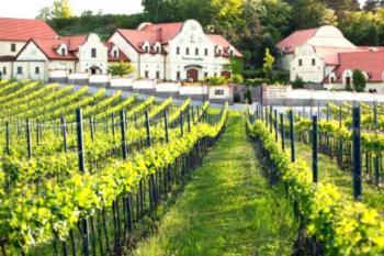 Vinařství U Kapličky - Apartment mit Whirlpool-Badewanne und Terrasse