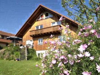 Ferienwohnung Mattenweg - Apartment mit 1 Schlafzimmer