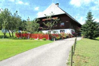 Ferienwohnung Schwarzwaldhof - Apartment