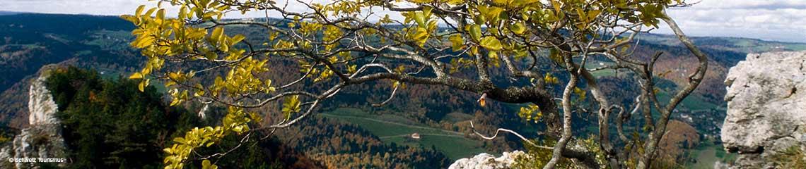 Le Noirmont, Jura Kanton, Schweiz