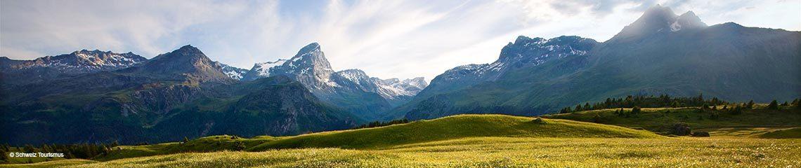 Surses, Schweiz