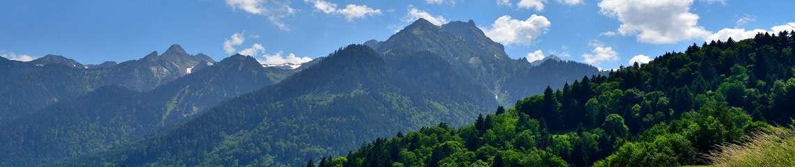 Bayerischer Wald, Deutschland