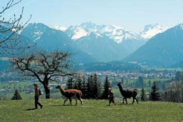 Ferienwohnung Oberstdorf - Haus Falkenhorst Whg.-Nr. 12 (172), Oberstdorf, Allgäu (Bayern), Bayern, Deutschland, Bild 17