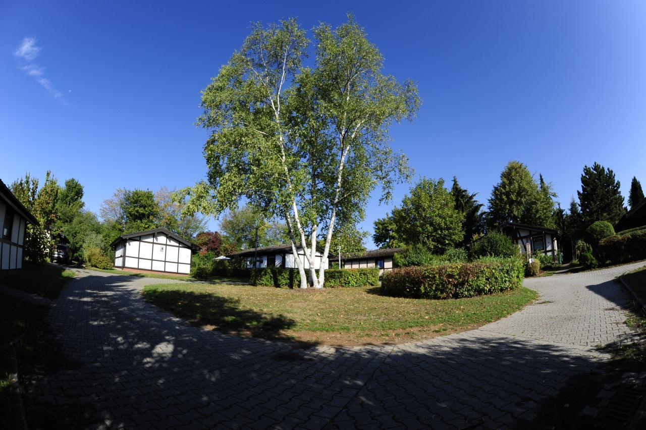 Holiday house Feriendorf Waldbrunn - Haustyp Winnetou (1317), Waldbrunn, Odenwald (Baden-Württemberg), Baden-Württemberg, Germany, picture 13