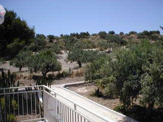 Ferienwohnung Ferienappartment FARFALLA (101611), Sciacca, Agrigento, Sizilien, Italien, Bild 7