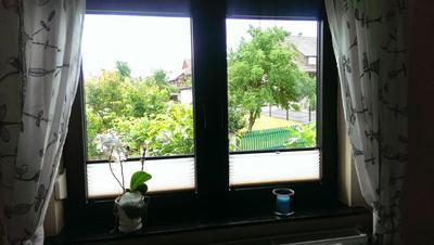Ferienwohnung Wunderschönes kleines Apartment (1021450), Fritzlar, Nordhessen, Hessen, Deutschland, Bild 8