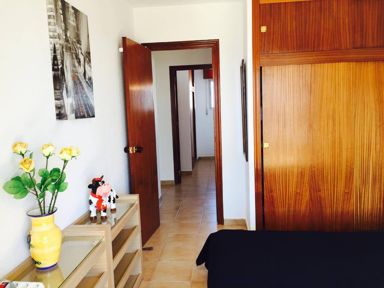 Appartement de vacances Sonnige 3.5 Zi-Wohnung am Meer (1026876), Torrevieja, Costa Blanca, Valence, Espagne, image 13