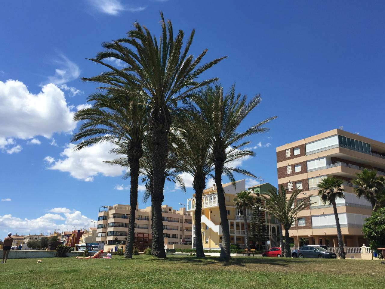 Appartement de vacances Sonnige 3.5 Zi-Wohnung am Meer (1026876), Torrevieja, Costa Blanca, Valence, Espagne, image 4