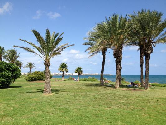 Appartement de vacances Sonnige 3.5 Zi-Wohnung am Meer (1026876), Torrevieja, Costa Blanca, Valence, Espagne, image 5