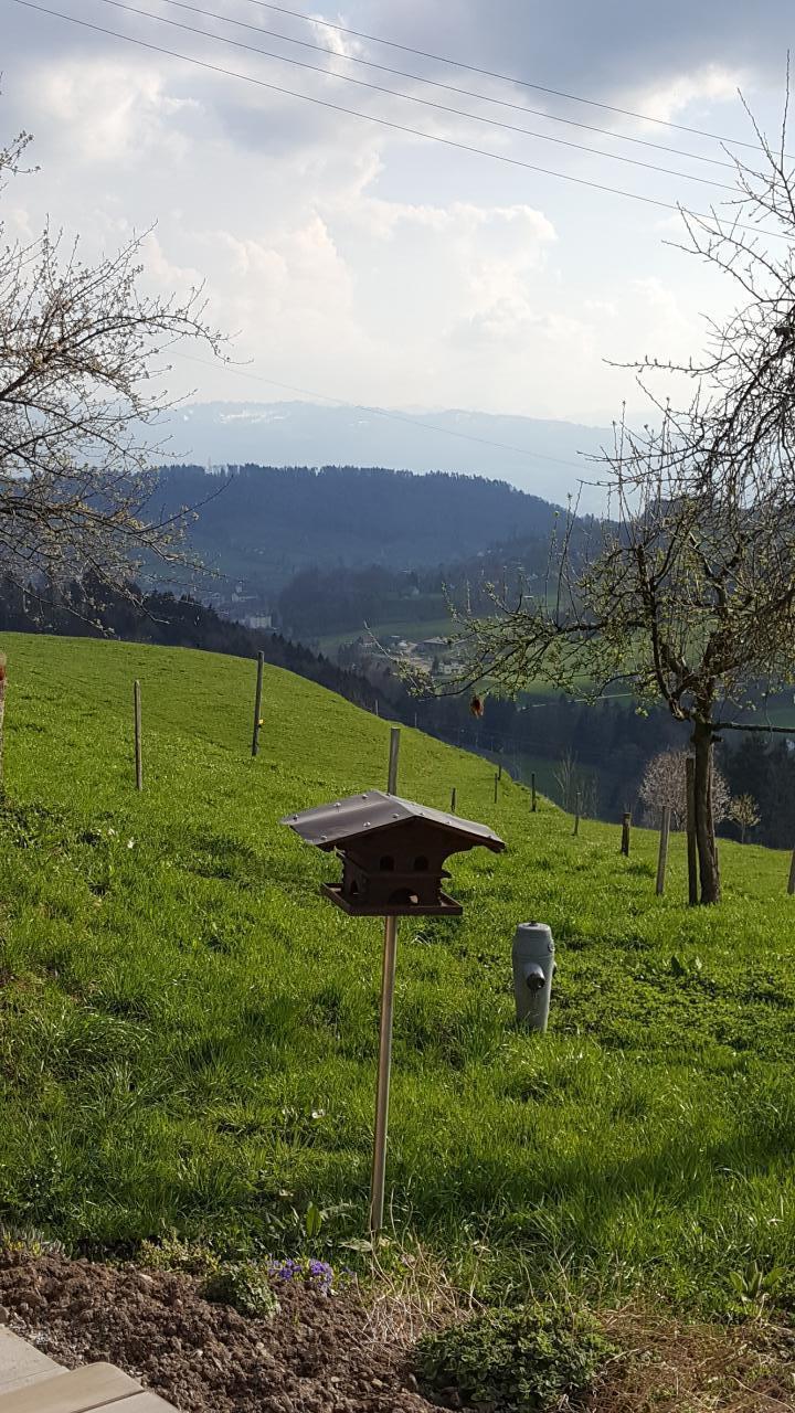 Ferienwohnung 2.5 Zimmer-Ferienwohnung (1029381), Wald ZH, Zürcher Oberland, Zürich, Schweiz, Bild 15