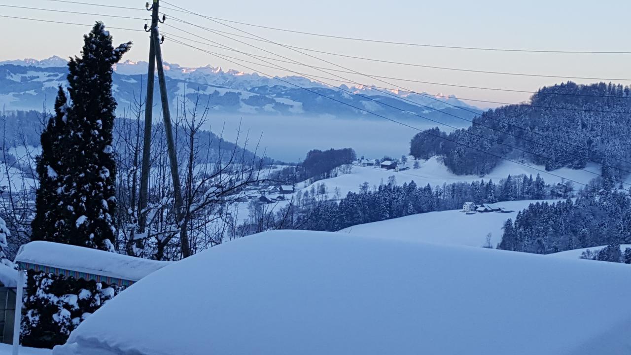 Ferienwohnung 2.5 Zimmer-Ferienwohnung (1029381), Wald ZH, Zürcher Oberland, Zürich, Schweiz, Bild 11