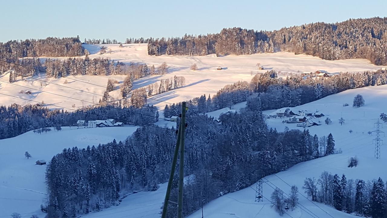 Ferienwohnung 2.5 Zimmer-Ferienwohnung (1029381), Wald ZH, Zürcher Oberland, Zürich, Schweiz, Bild 12