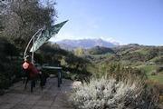 Olivenfarm, tief im Lande Abruzzos Ferienwohnung