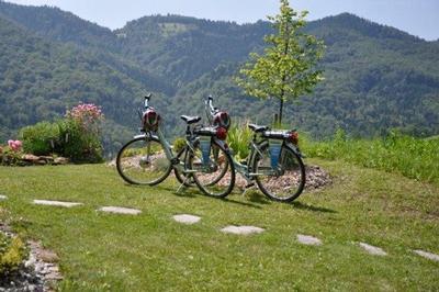 Ferienhaus Sunkihof - Ferienhäuser genießen (1084331), Arnfels, Südsteiermark, Steiermark, Österreich, Bild 10