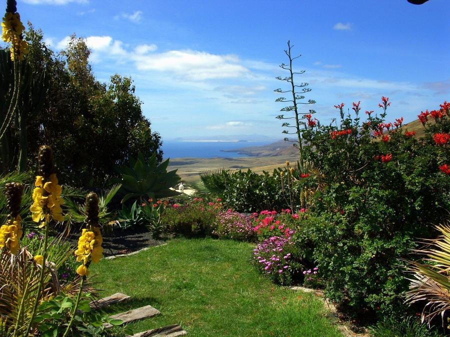Holiday house Casa Feliz (1116966), La Asomada, Lanzarote, Canary Islands, Spain, picture 38