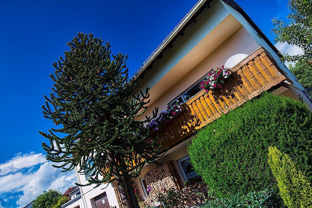 Ferienhaus 4 Sterne Ferienwohnung (130 m²) mit 4 Schlafzimmern Nähe Limburg-Rheingau-Taunus-Westerwal (1119510), Hünfelden, Taunus, Hessen, Deutschland, Bild 22