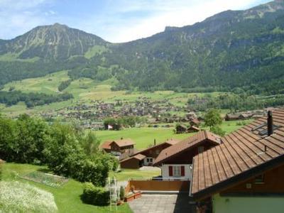 Holiday apartment Wohnung Meyer-Ruef (1148750), Lungern, Obwalden, Central Switzerland, Switzerland, picture 8