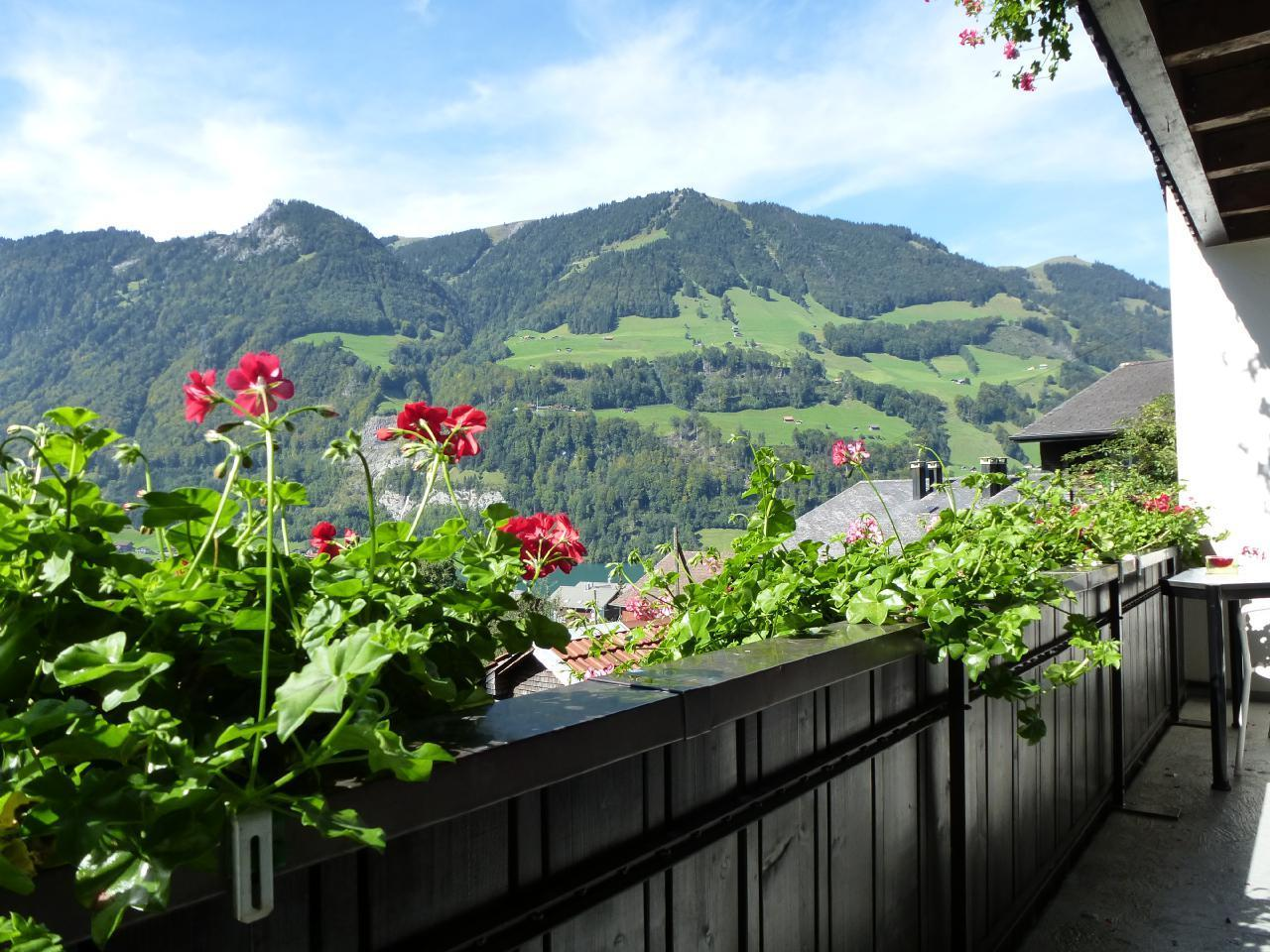 Holiday apartment Paradiesli Steiger Lungern (1148751), Lungern, Obwalden, Central Switzerland, Switzerland, picture 2