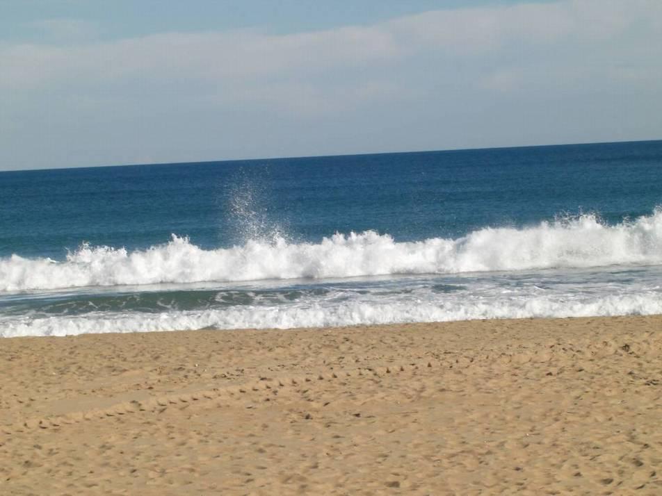 Ferienwohnung 4 Personen 62qm Costa Blanca (118835), Orihuela-Costa, Costa Blanca, Valencia, Spanien, Bild 31