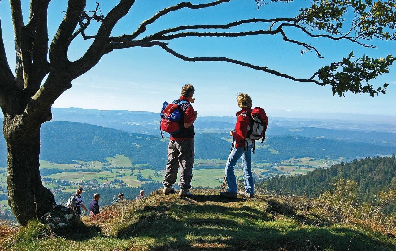 Ferienwohnung 2 (Fam. Rank) in Blaibach (119098), Blaibach, Bayerischer Wald, Bayern, Deutschland, Bild 17