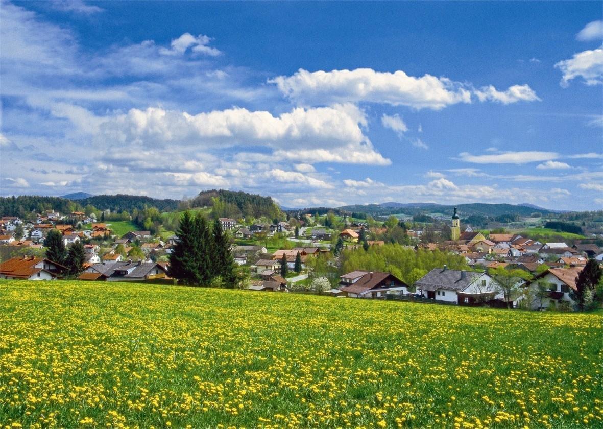 Ferienwohnung 2 (Fam. Rank) in Blaibach (119098), Blaibach, Bayerischer Wald, Bayern, Deutschland, Bild 12