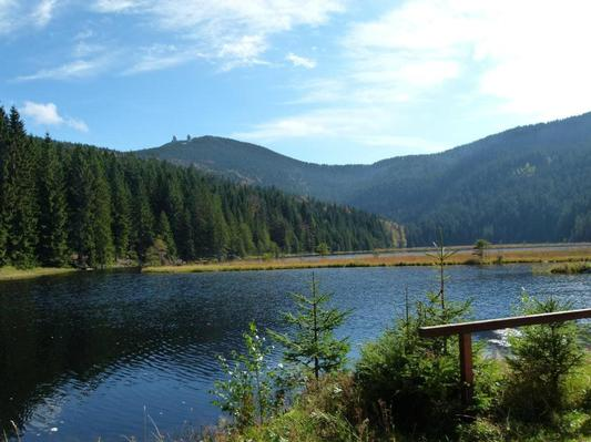 Ferienwohnung in Blaibach 1 (119099), Blaibach, Bayerischer Wald, Bayern, Deutschland, Bild 13