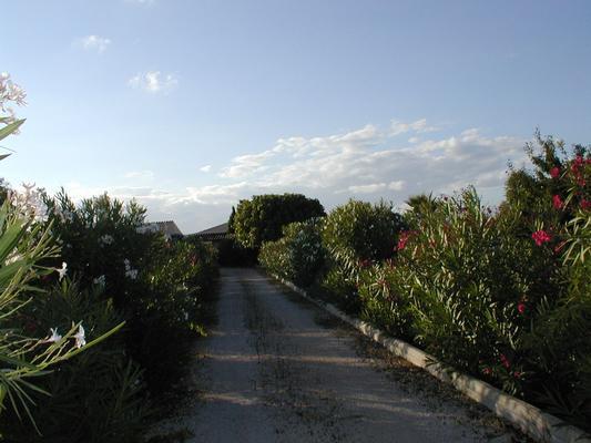 Ferienhaus Finca Casa de Campo, Montuiri (119689), Montuïri, Mallorca, Balearische Inseln, Spanien, Bild 14