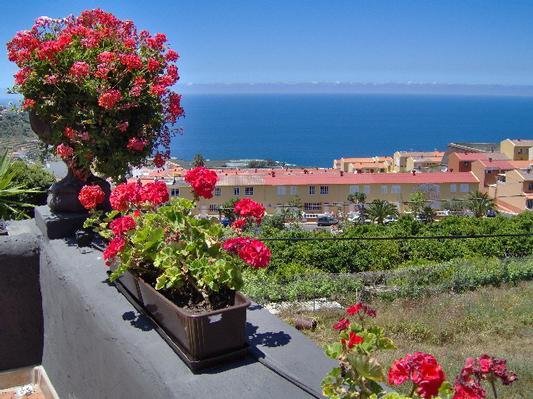 Ferienwohnung Apartment 2 (122843), Icod de los Vinos, Teneriffa, Kanarische Inseln, Spanien, Bild 10