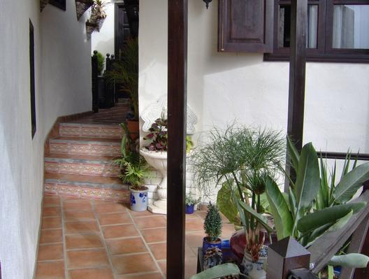 Ferienwohnung Apartment 2 (122843), Icod de los Vinos, Teneriffa, Kanarische Inseln, Spanien, Bild 16