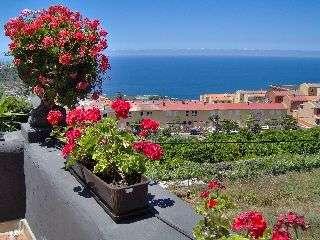 Ferienwohnung Apartment 4 (122844), Icod de los Vinos, Teneriffa, Kanarische Inseln, Spanien, Bild 9